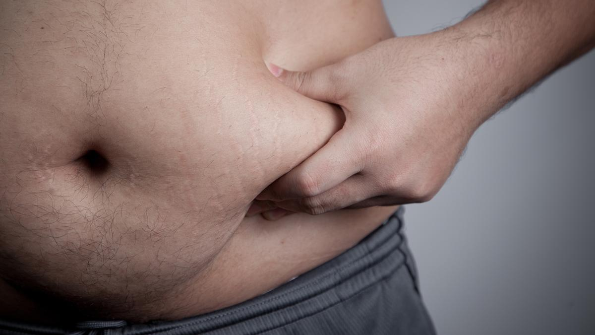 Scientists have identified a protein that regulates fat levels in worms and could do the same in humans (Photo: Shutterstock)