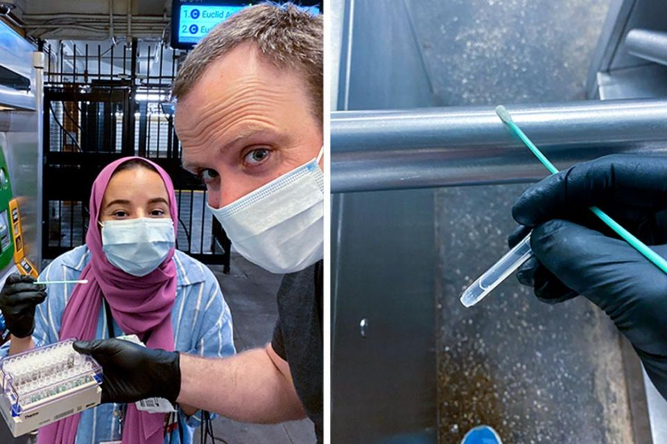 Weill Cornell Medical College student Heba Shabaan (left) and Dr. Christopher Mason swab for microbes in the New York City