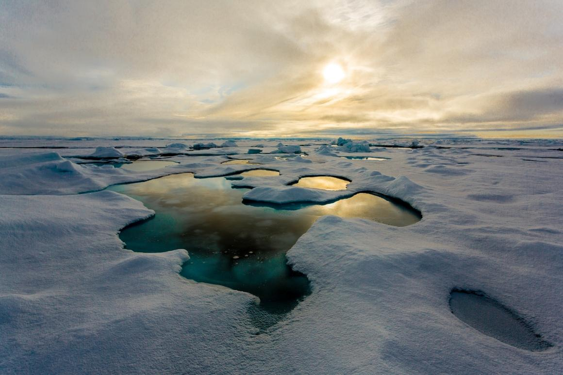 Samples of Arctic sea ice have been found to contain up to 12,000 particles per liter