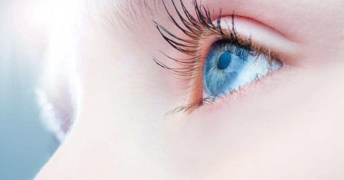 Gene therapy mends optic nerves in promising advance for treating glaucoma
