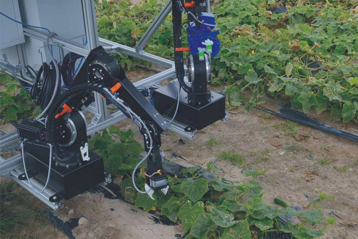 A prototype of the dual-arm robot system during the first field tests