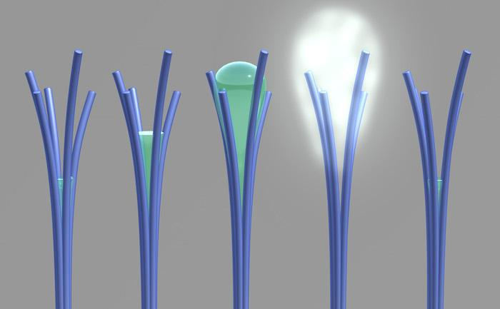 Researchers have accidentally created nanorods that can absorb water at low humidity and expel it as the humidity increases
