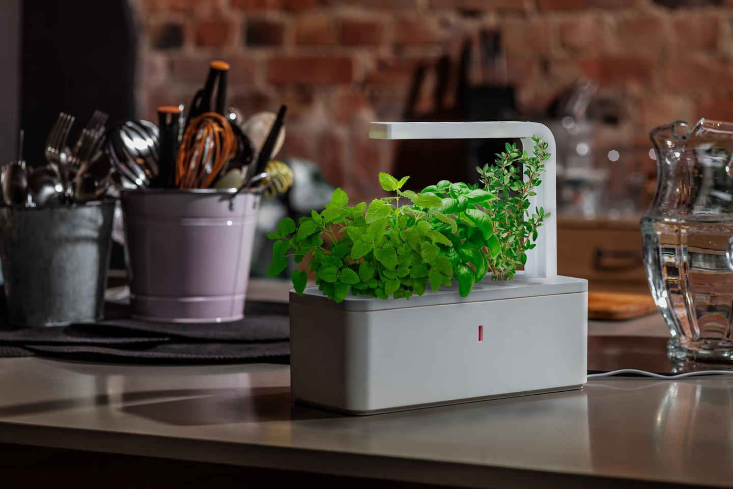 The Smart Herb Garden from Click & Grow