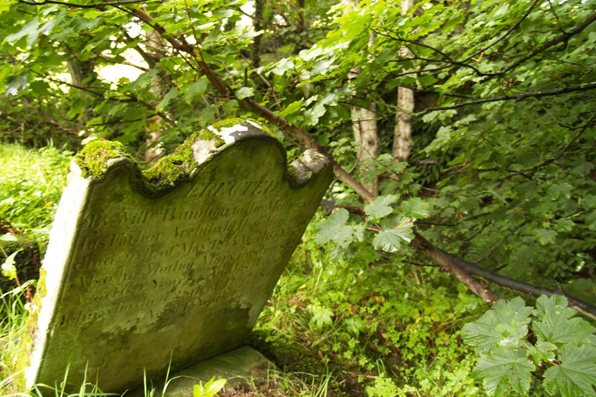 New, green alternatives to cremation and burial are on the way (Photo: Noel McKeegan)