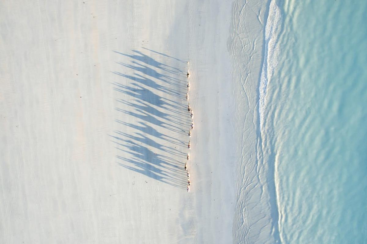 A caravan of camels casting long shadows across Cable Beach in Western Australia, the second-place winner in the Travel category