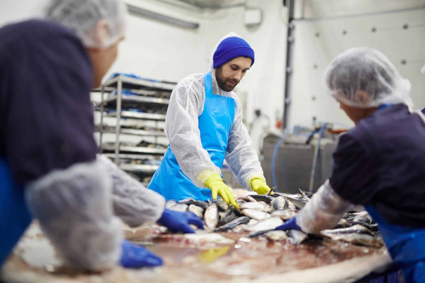 The new process could be an extra source of revenue for seafood-processing companies