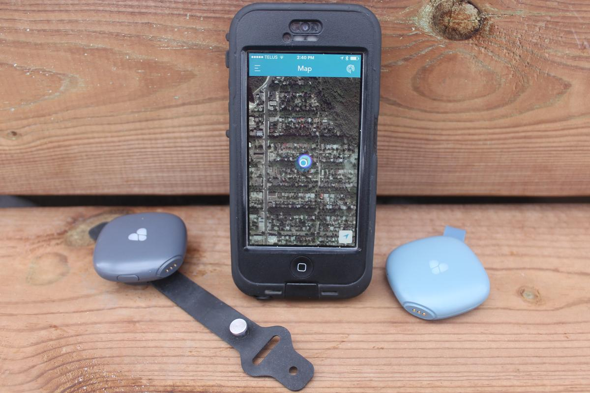 The Findster Duo+ system consists of an iOS/Android app along with a Pet module (left) and a Guardian module (right)