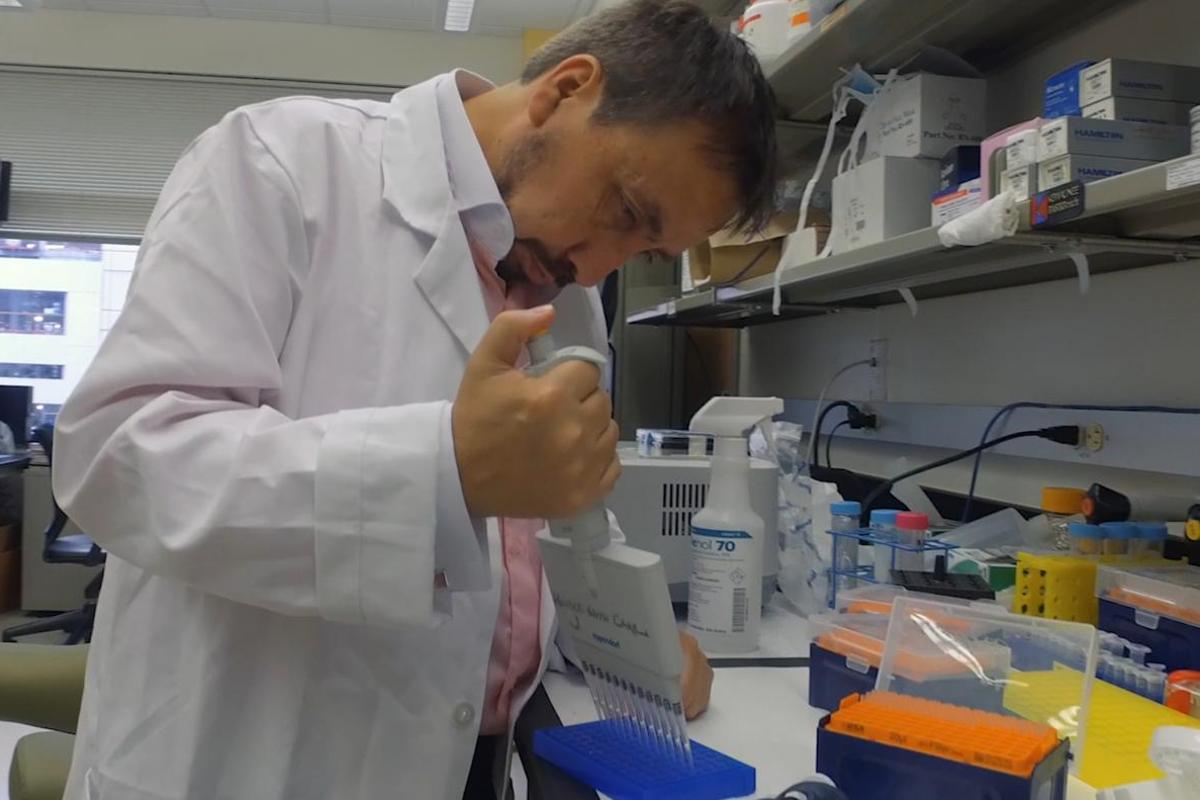A University of Texas research team has discovered that type 2 diabetes can be induced by a misfolded protein meaning the condition could be similar to certain infectious diseases