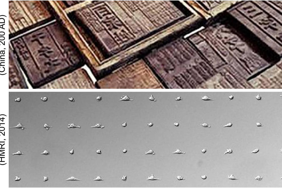 A new cell-printing technique similar to the ancient art of block printing could see the cell stamps produced for around $1