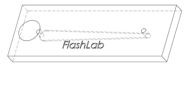 What a prototype of the FlashLab chip looks like