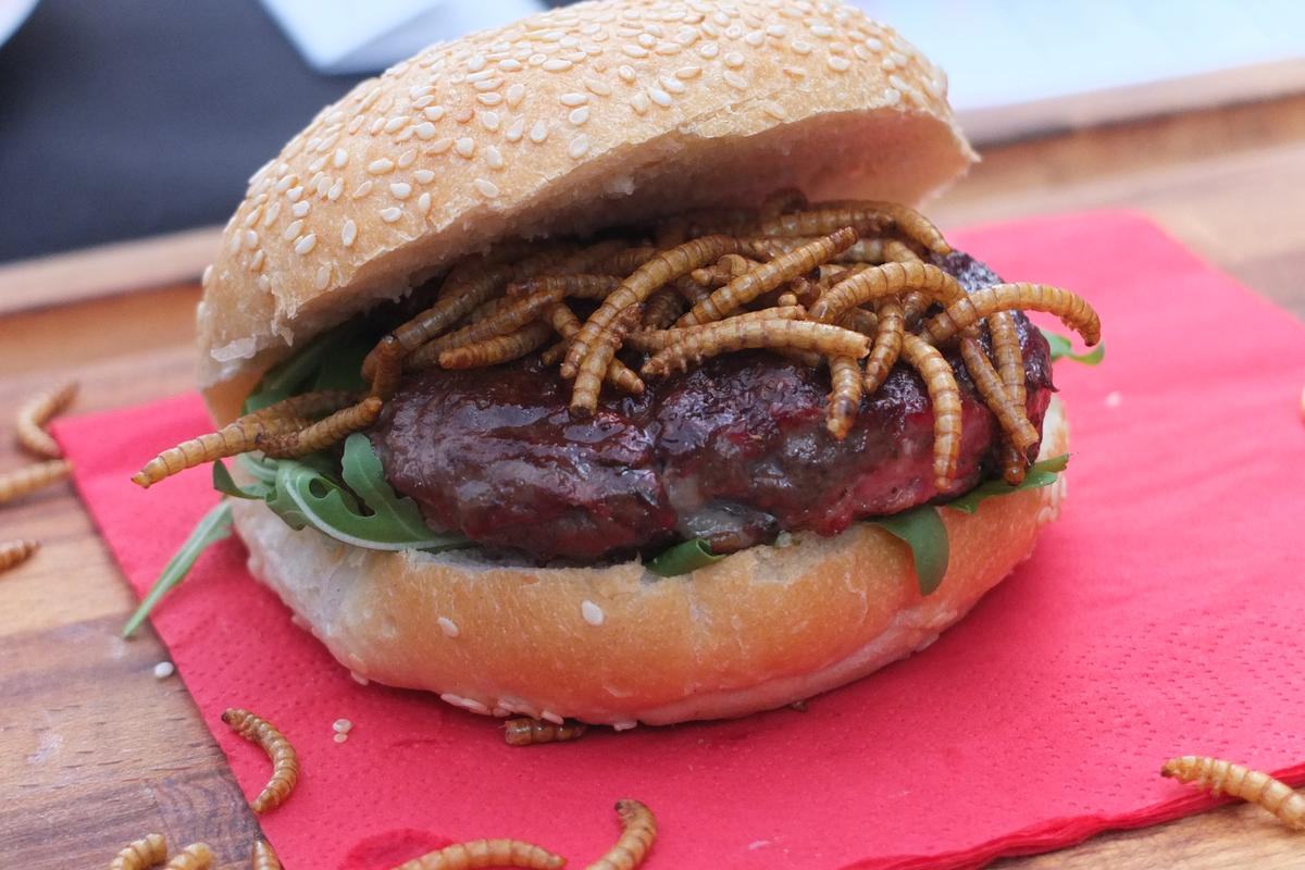 """You want flies with that? Mealworms on a pigeon burger at Rentokil's pop-up """"pestaurant"""" (Photo: Gizmag)"""