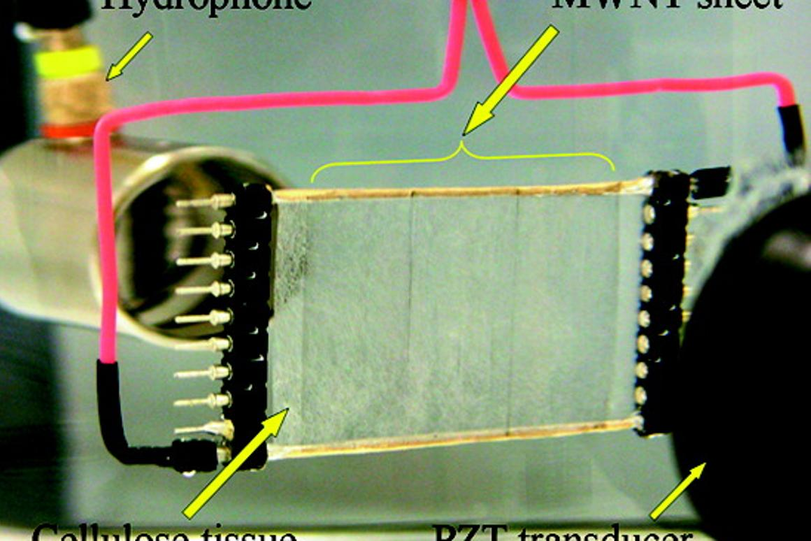 One of the sound-generating carbon nanotube sheets