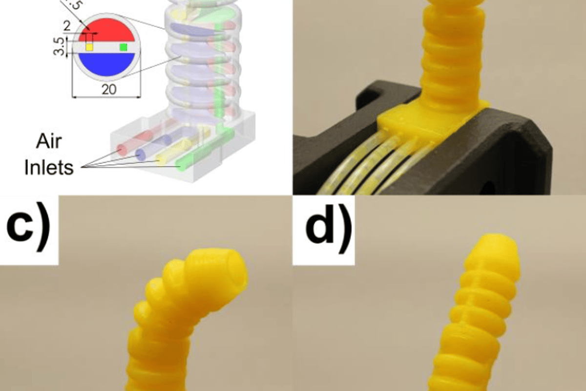 The researchers used their new technique to produce pairs of actuators they say mimc the function of octopus tentacles