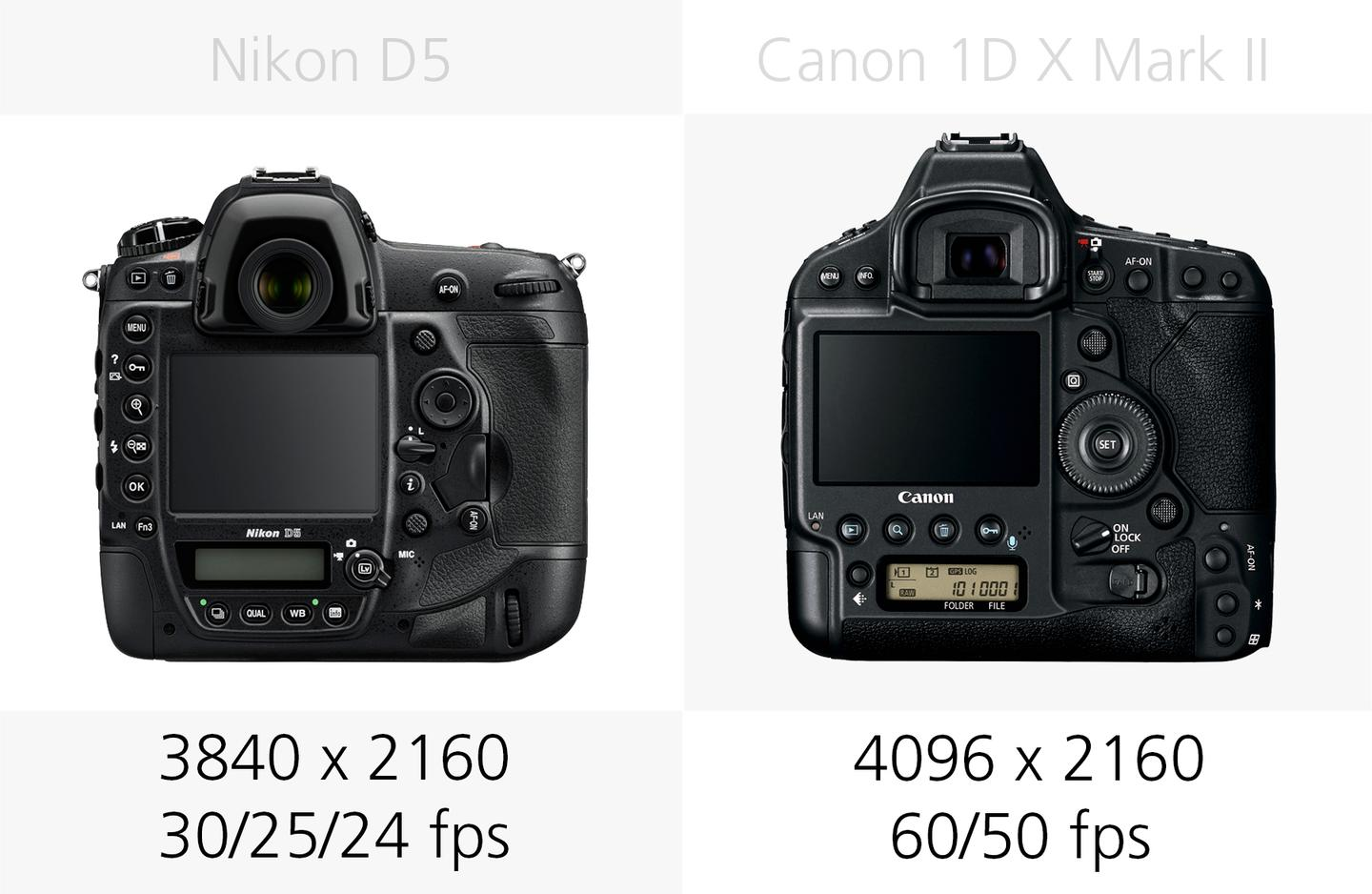 4K video recording comparison of the Nikon D5 and Canon 1D X Mark II