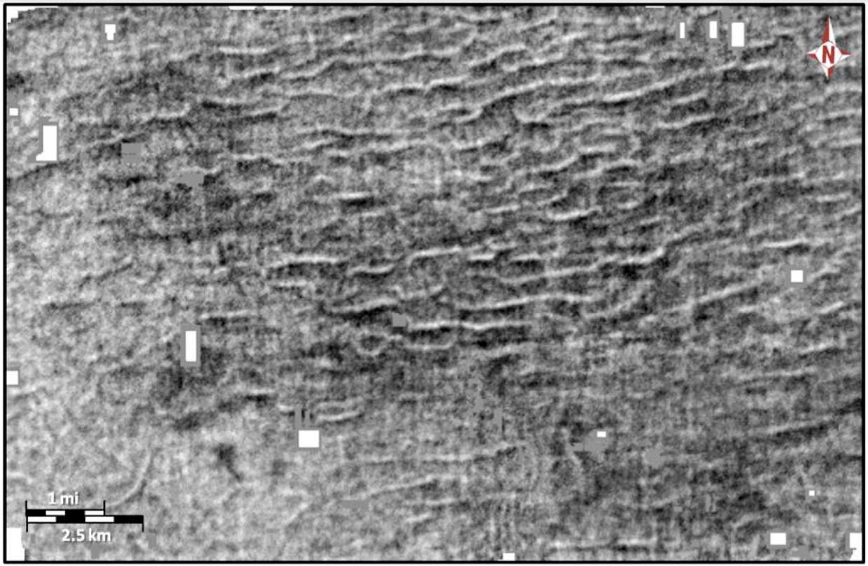 Seismic images of megaripples below Louisiana