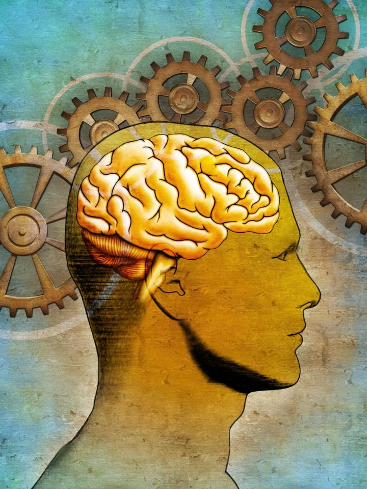 The team used fMRI and machine learning to track brain function