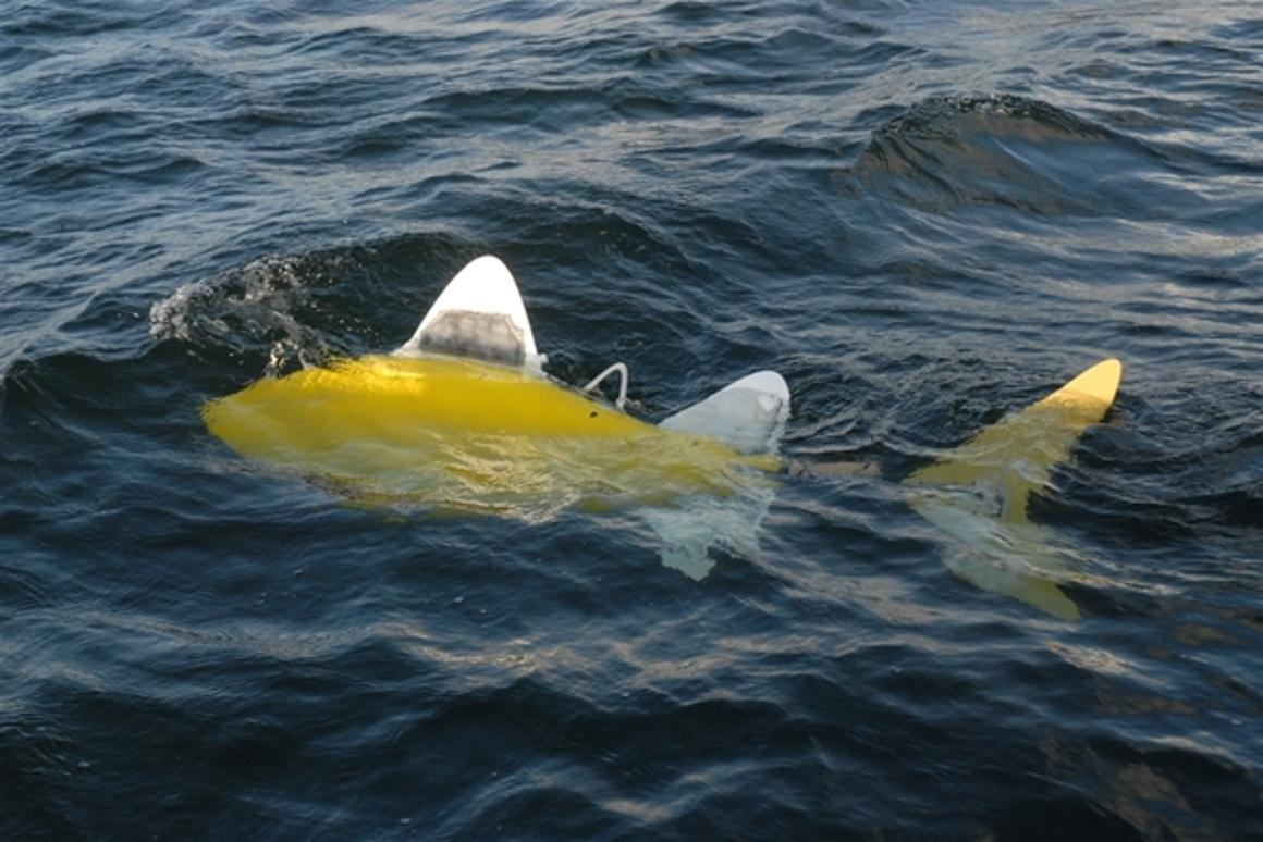 The Shoal Consortium's robo-fish could provide round the clock protection against harmful pollutants by patrolling in teams.
