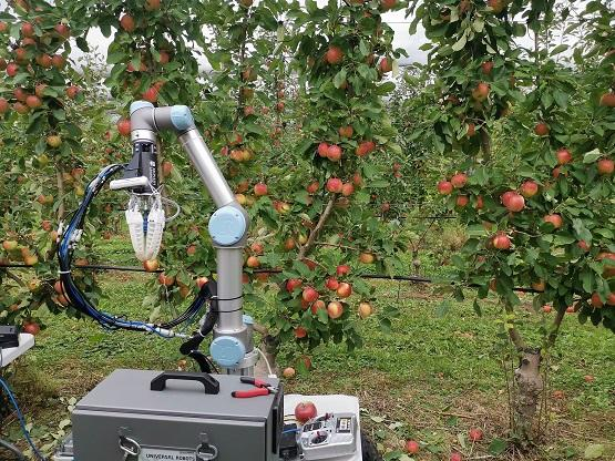 An apple-harvesting robot created by Monash University researchers is put through its paces in the field