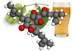 The configuration of a humulone molecule is superimposed on a hops vine and a glass of beer.(Image: Werner Kaminsky)