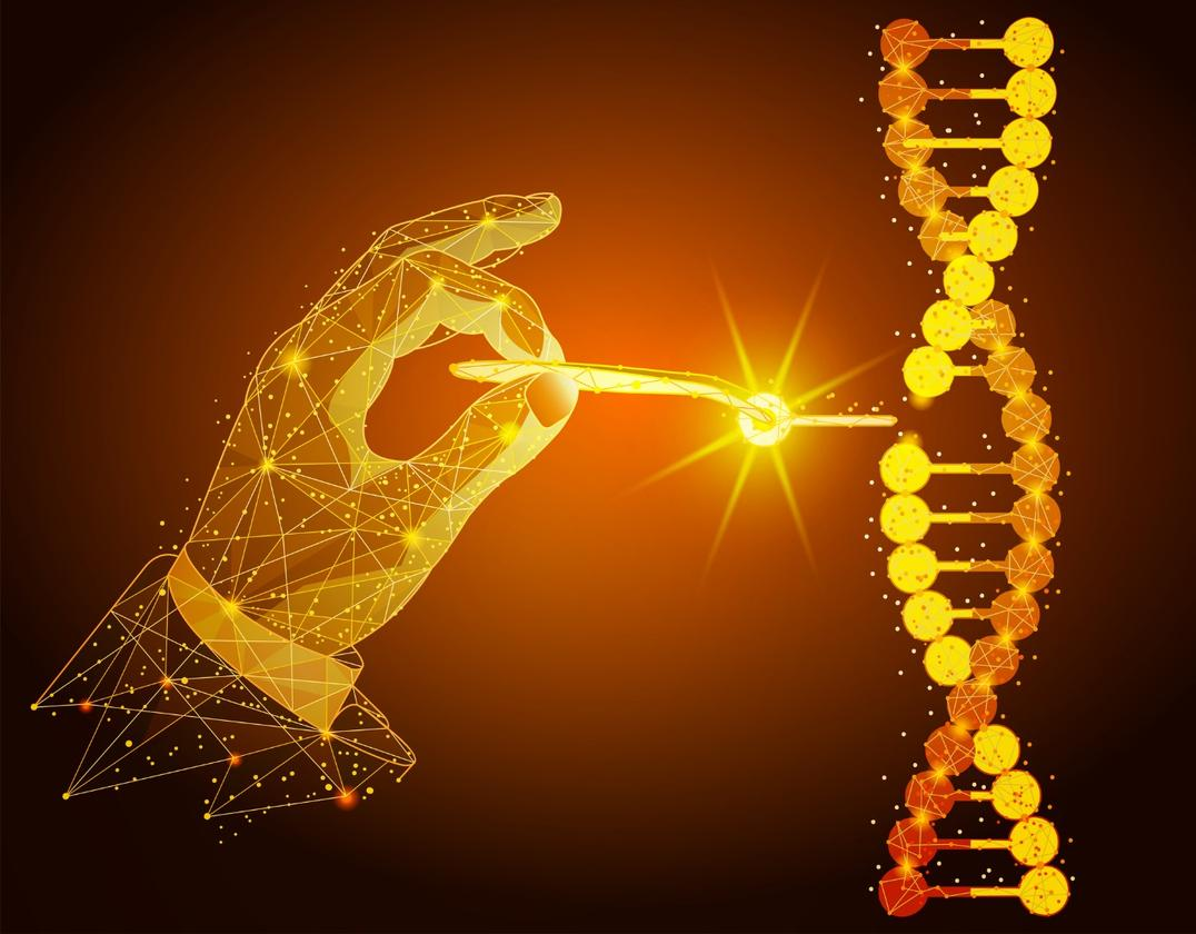 Newly discovered anti-CRISPR molecules can quickly inhibit the activity of the CRISPR-Cas9 gene editing process
