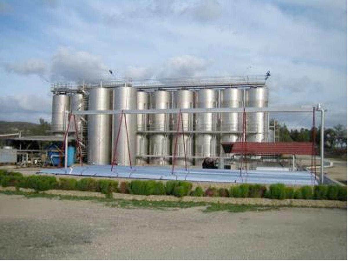 At this winery, the solar collector at the front drives the absorption refrigeration machine. The wine in the fermentation tanks (in the background) is cooled by a cold accumulator (Photo: Fraunhofer ISE)