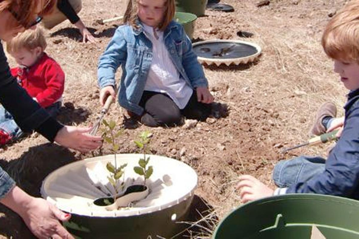 The Groasis Waterboxx is a low-tech device that helps saplings grow into trees in inhospitable environments