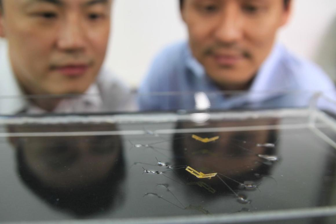Scientists at Seoul National University examine their robot's extreme form of locomotion