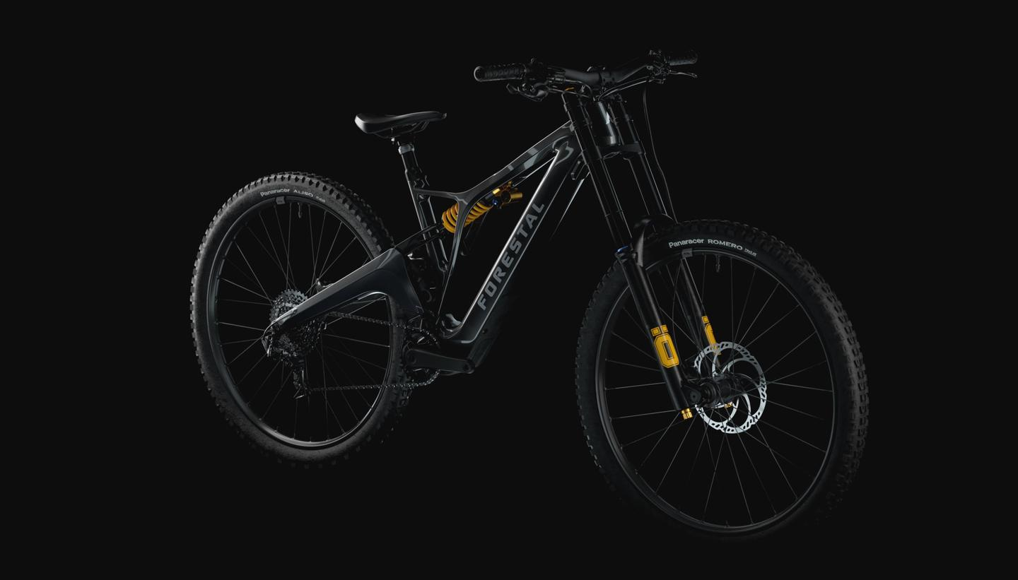 The Hydra is a flat downhill trail blaster with full-length forks and coilover damper