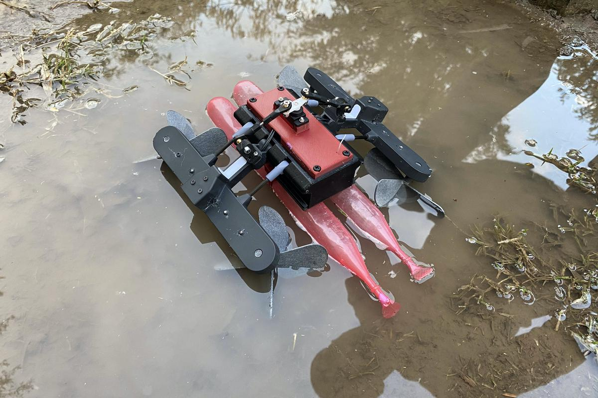 The AmphiSTAR robot, pictured here moving from water to land