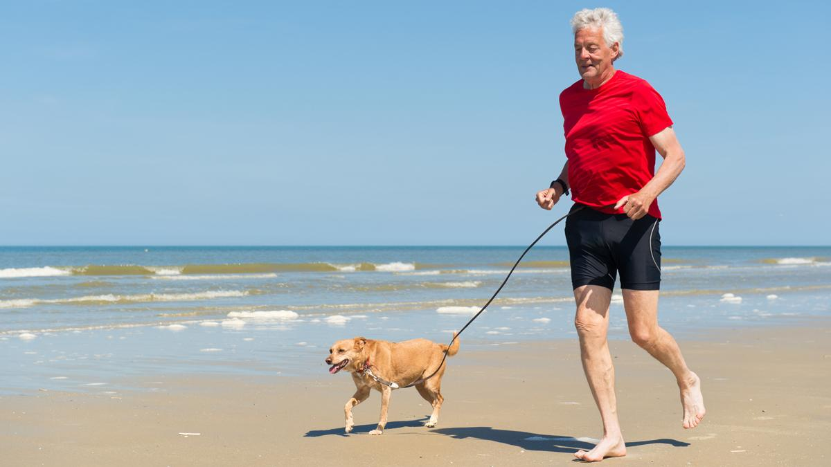 It is hope a new class of drugs found to slow the aging process in mice could have the same effects in humans (Photo: Shutterstock)