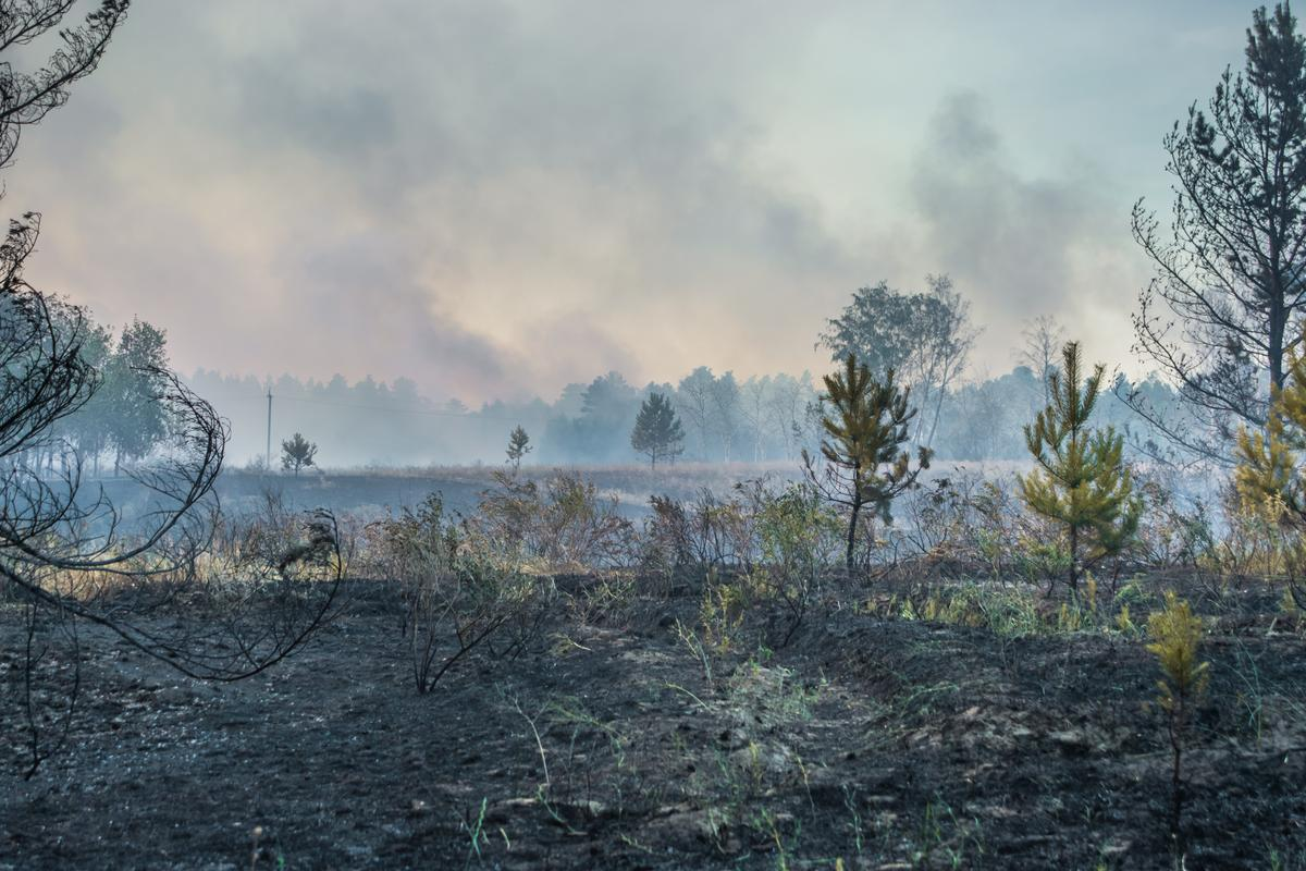 Peat fires can burn for weeks and are difficult to extinguish