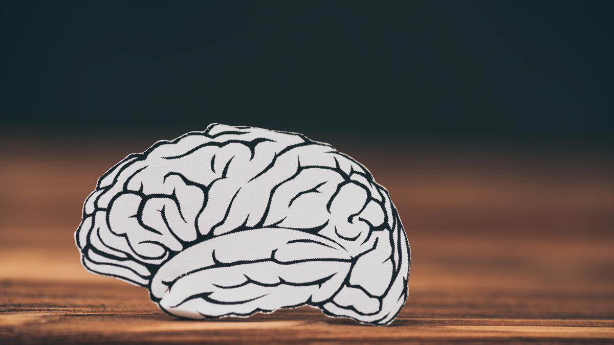 Association between Alzheimer's and high brain iron to be tested in new clinical trial