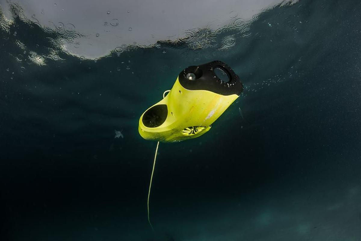 The FiFish P3 has a maximum speed of 1.5 m ( 4.9 ft) per second