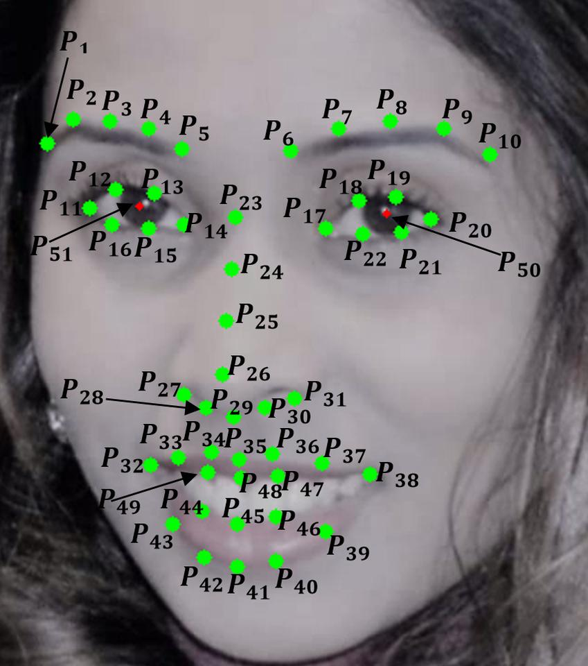 The algorithm analysesthe movement of 49 points on the face