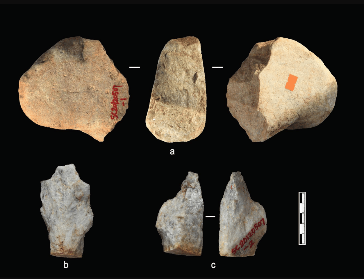 The team discovered bones andstone tools, including a notch, scrapers, cobble, hammer stones and pointed pieces