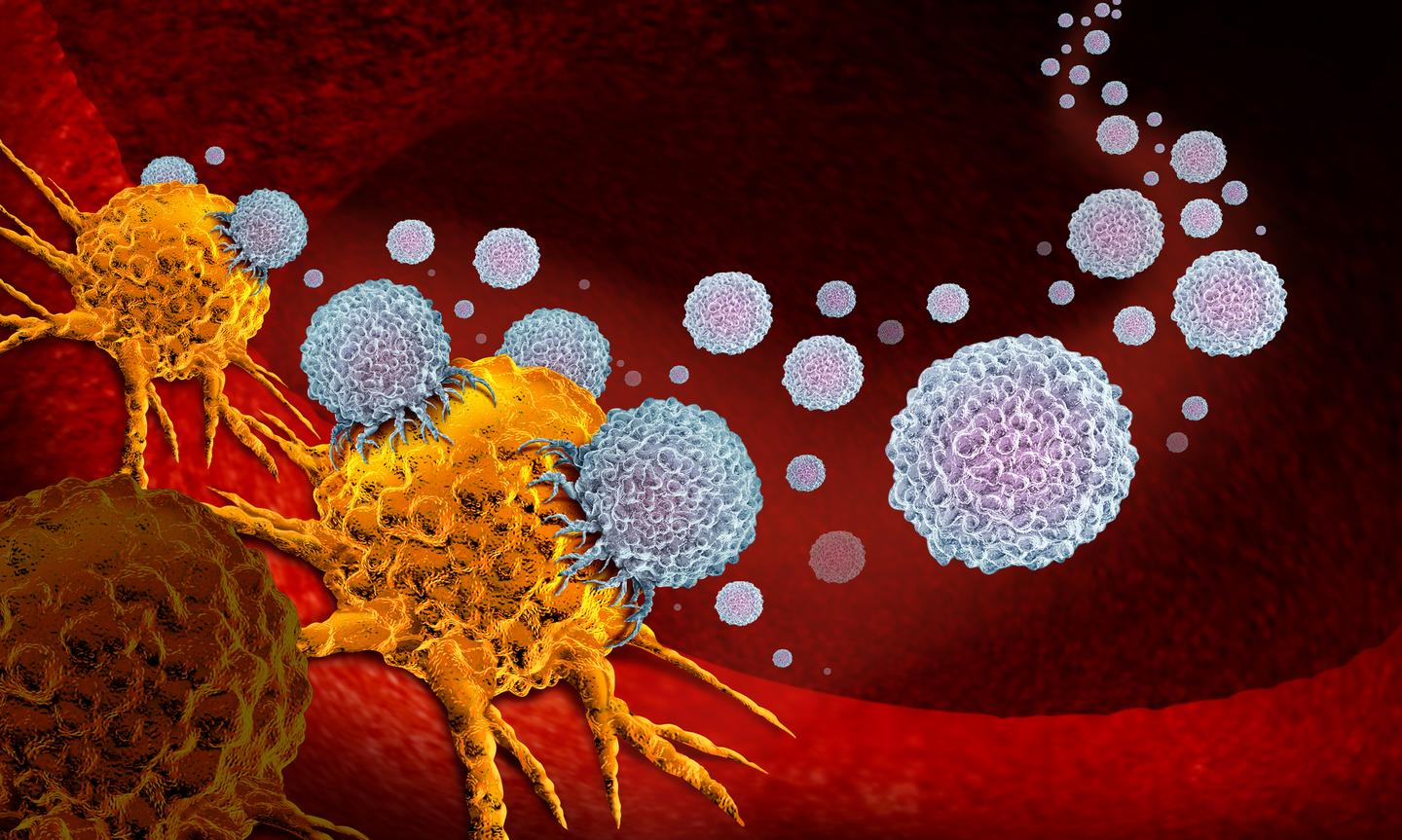 A new study has found a way to boost immunotherapy treatments against cancer