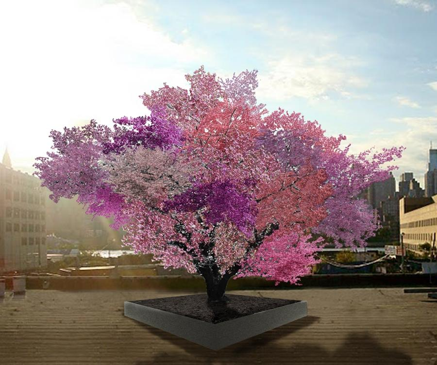 Tree of 40 Fruit is a project in which a single tree is modified to bear over 40 different types of stone fruit (Image: Sam Van Aken / Ronald Feldman Fine Art)