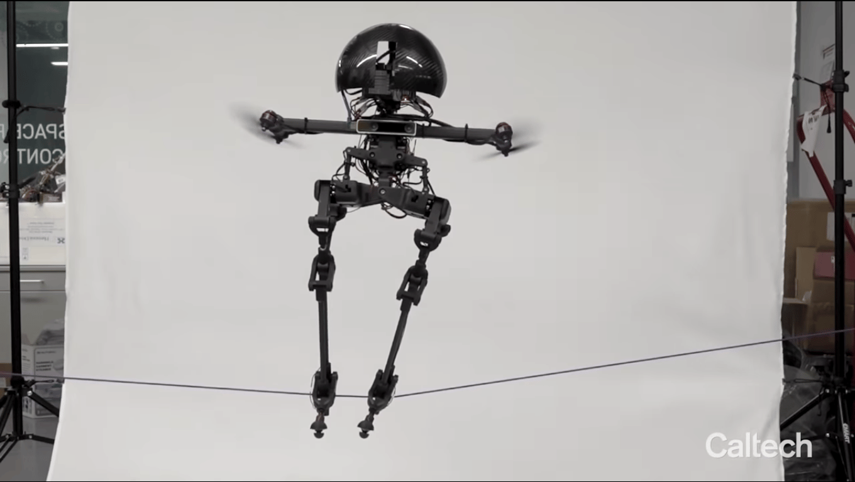 LEONARDO is an agile robot that can walk or fly