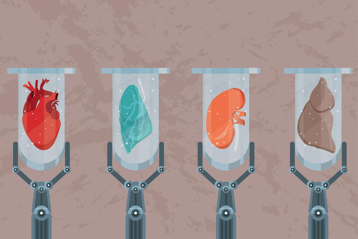 Wood, human blood, meat, and dairy can all be potentially grown in a lab. What else is in our lab-grown future?