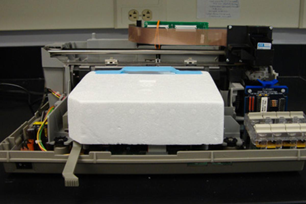 Using a modified HP DeskJet 500 printer, researchers at Clemson University have discovered that inkjet bioprinting disrupts the membranes of the cells being printed, leaving them open to having proteins inserted