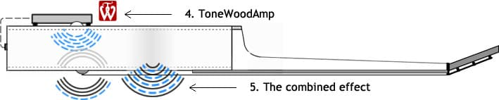 The acoustic guitar's natural sound is combined with effects from the ToneWoodAmp