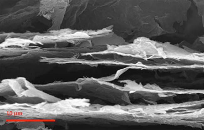 A scanning electron microscope image of the treated graphene oxide paper