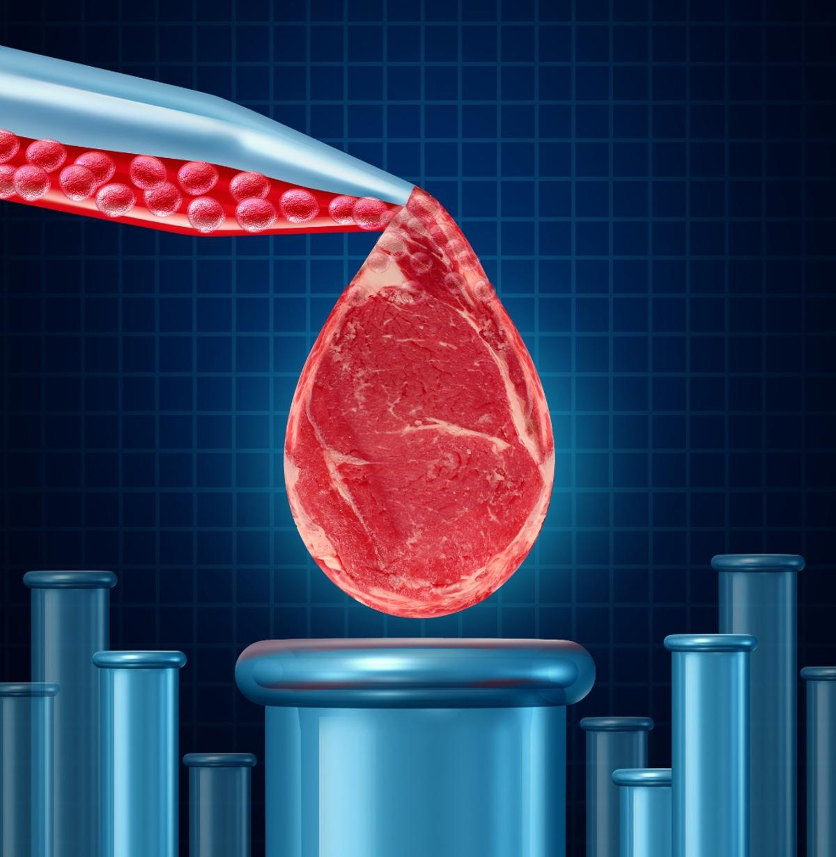 Should lab-grown meat be called meat? A new bill just passed in the state of Missouri says no