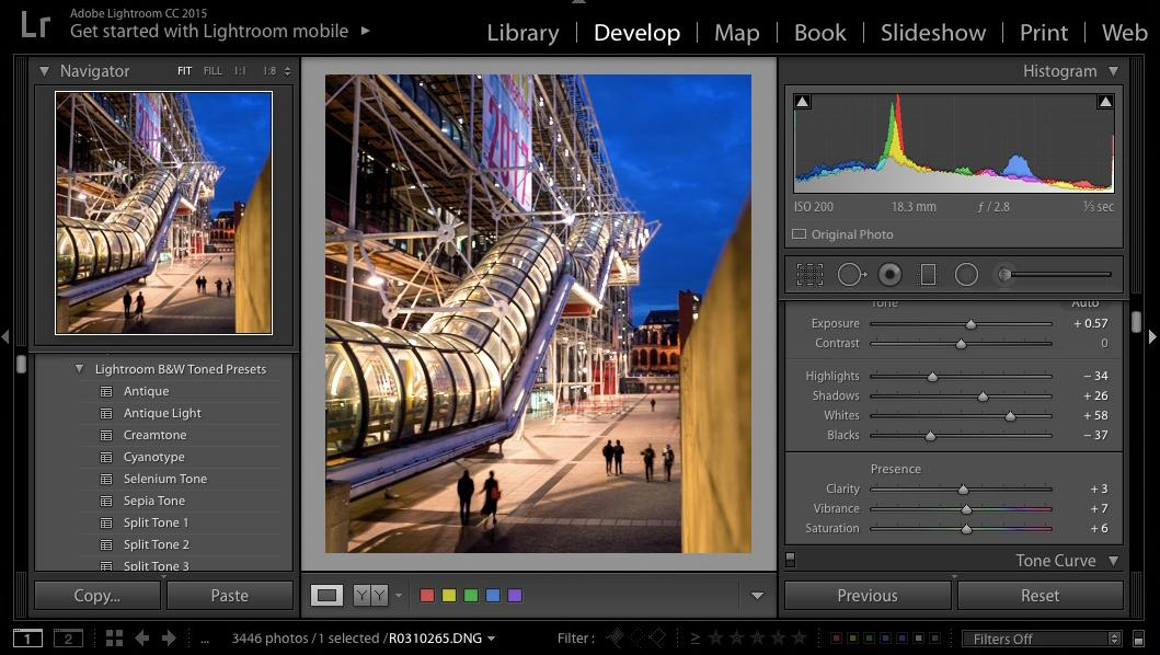 Processing RAW files lets users make the most of the information captured by their digitalcamera