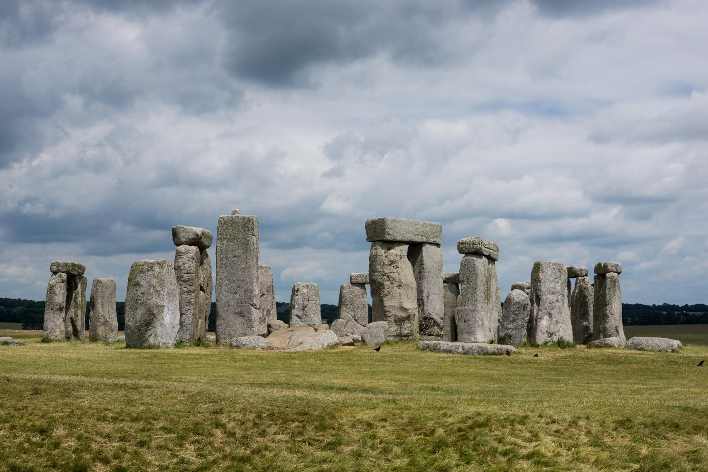 Lard may have greased the skids used to haul the giant megaliths of Stonehenge