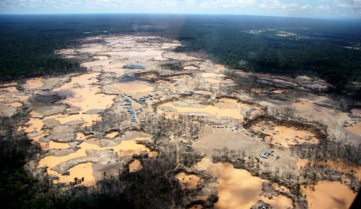 What appear to satellites as natural wetlands are in fact areas of devastated rainforest