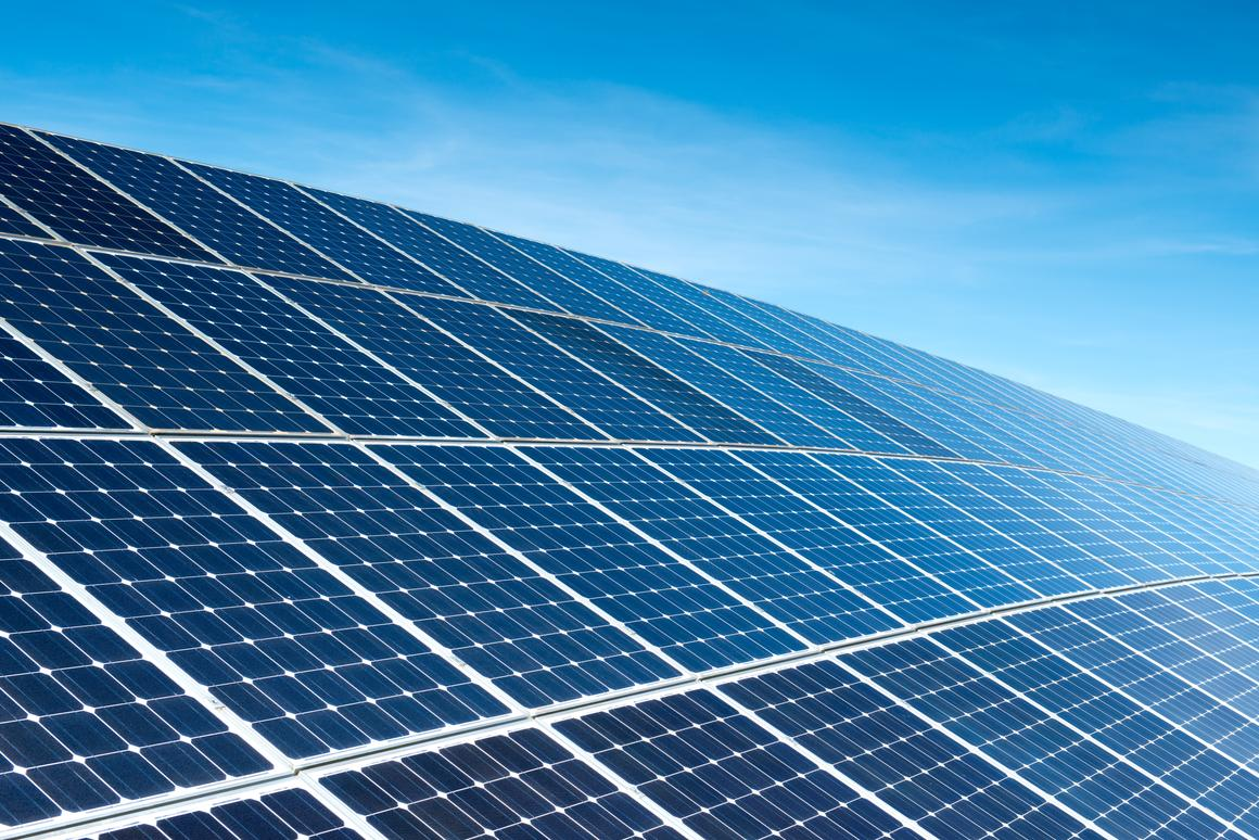 In thefuture, bacteria-powered solar cells could be competing with conventional panels