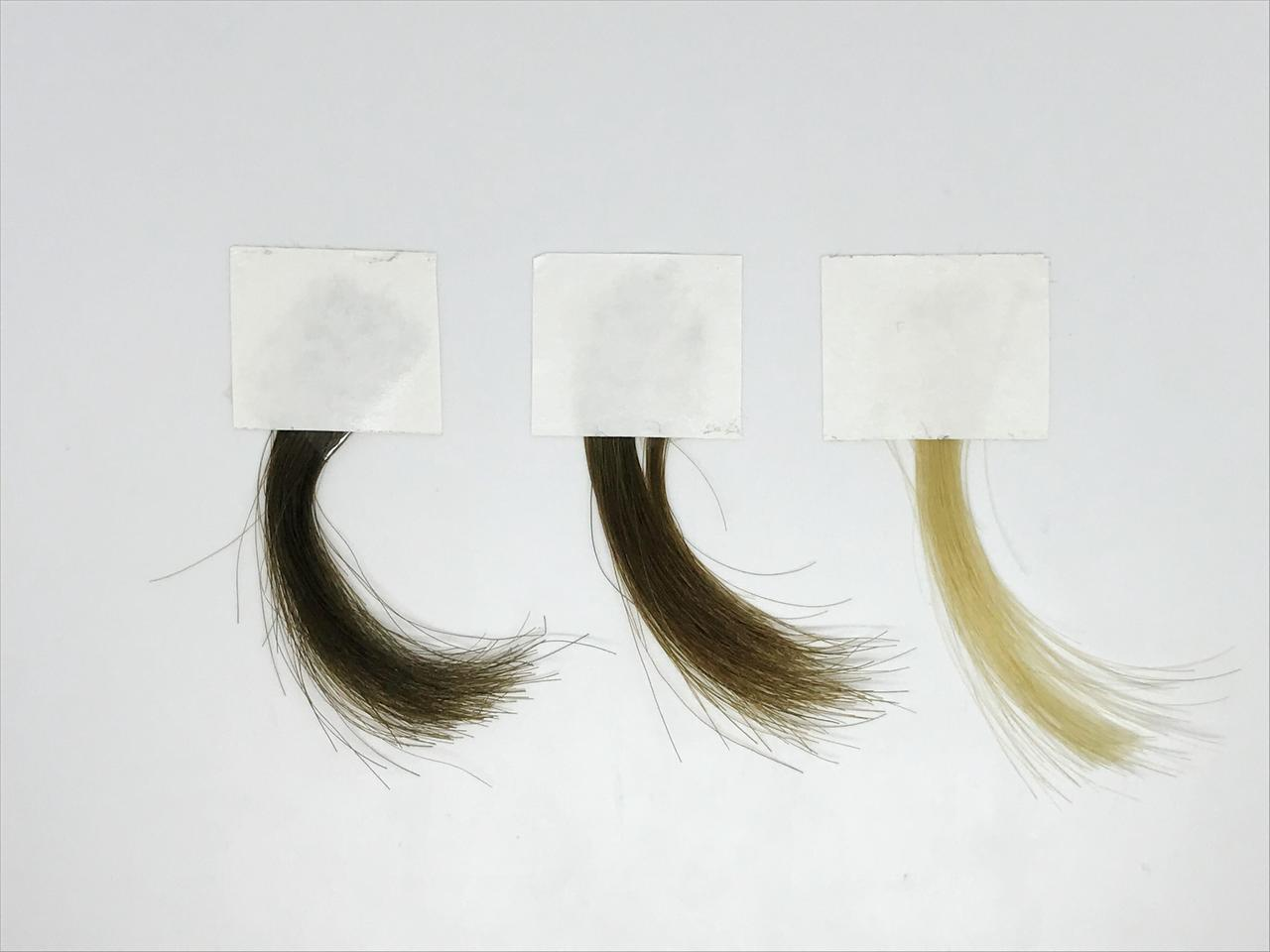 These hair samples were colored utilizing the synthetic melanin