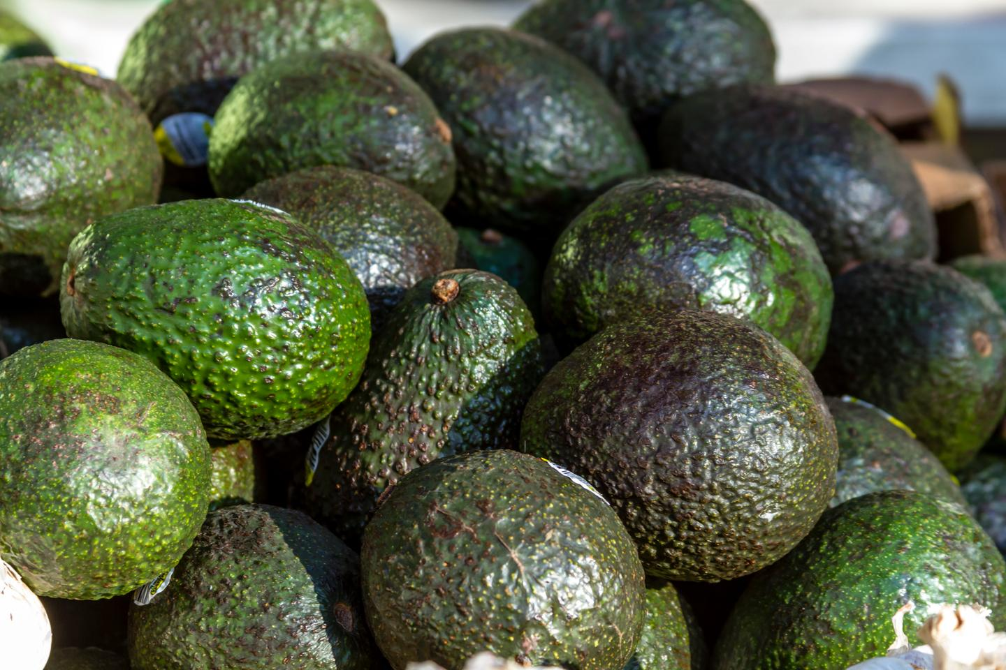 Apeel-coated avocados reportedly stay ripe (without spoiling) twice as long as their untreated counterparts