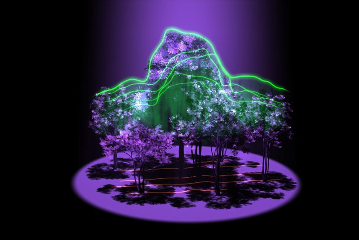An artist's impression of how the Global Ecosystem Dynamics Investigation lidar will reveal the 3D architecture of forests in a bid to further our understanding of the carbon cycle (Image: NASA)